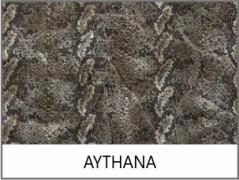 AYTHANA